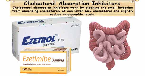 Cholesterol Medicine Cholesterol Absorption Inhibitors