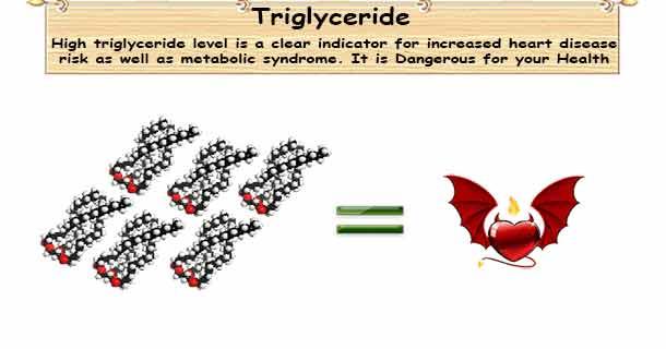 Triglyceride