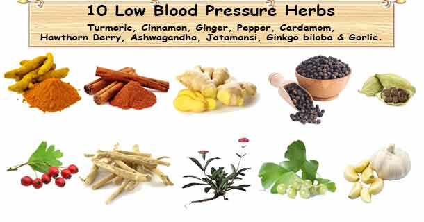 Low Blood Pressure Herbs