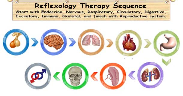 Reflexology Sequence