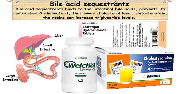 Bile Acid Sequestrants on blood circulation