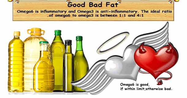 Good & Bad Fats