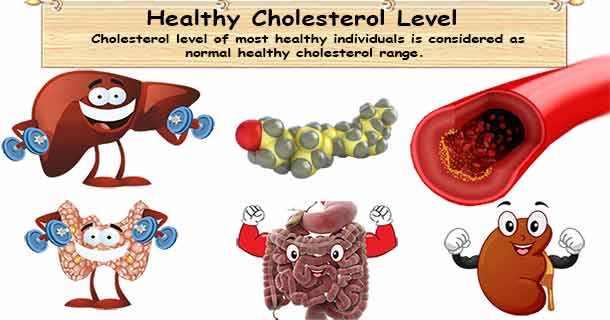 Healthy cholesterol range