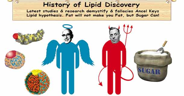 History of Lipid Discovery