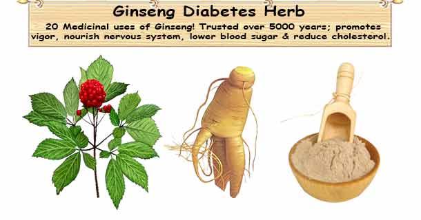 can diabetics take ginseng