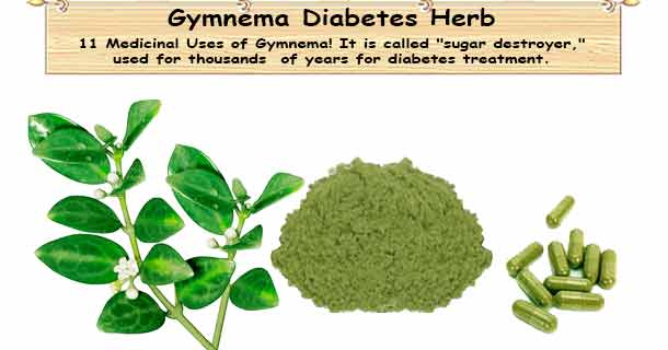 Diabetes Herb Gymnema