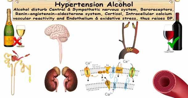 Alcohol Hypertension; Alcohol in Moderation Lower Your ...