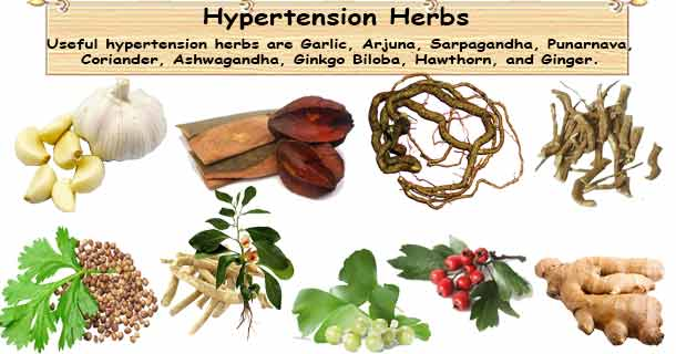 High Blood Pressure Herbs