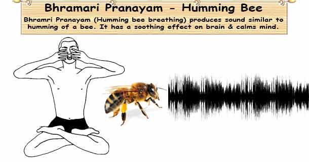 Bhramri Pranayam - Humming Bee Breathing