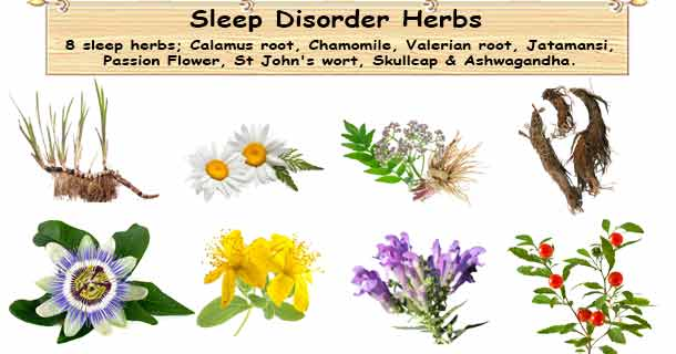 Insominia Herbs Herbal Remedies For Insomnia